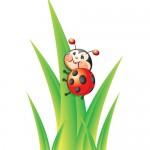 Libby the Ladybug Vector Illustrations