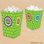FREE Printable Ninja Turtle Popcorn Box