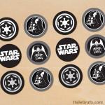 FREE Printable Star Wars Darth Vader Cupcake Toppers