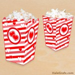 FREE Printable Valentine's Day Popcorn Box